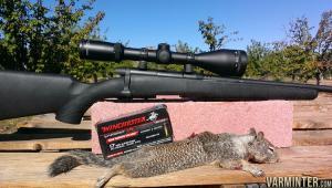 17-Winchester-Super-Magnum-3.jpg