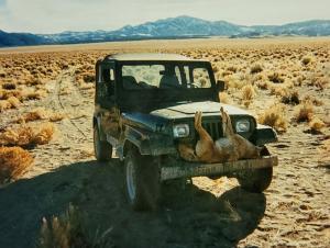 Coyote-Hunting-Jeep.jpg