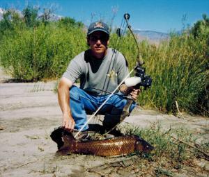 Bowfishing---A-Nice-Carp.jpg