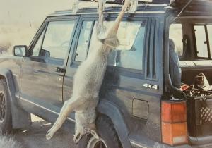 Coyote-Hunting-5.jpg
