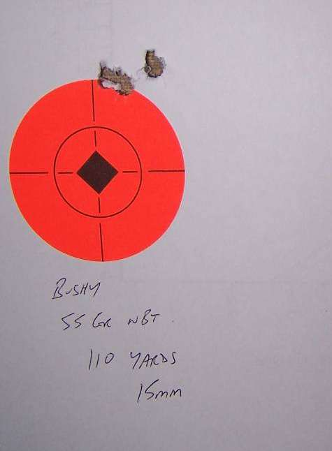 Bushmaster Varminter Accuracy - Guns, Loads, Optics and Gear for