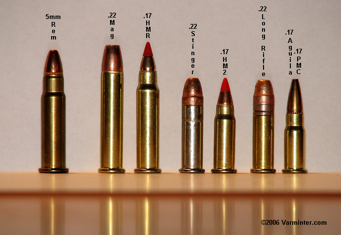 22 Magnum Bullet Vs 17 Hmr Newhairstylesformen2014 Com