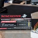 17-winchester-super-magnum-7