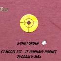 cz-17-hornet-hunt-report-33