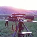 Remington 220 Swift on an Alfalfa Field in California