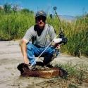 Bowfishing - A Nice Carp
