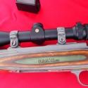 Ruger-17WSM-5