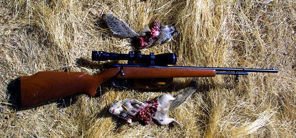 Bring Back the 5mm Rimfire Magnum Part I by Eric A. Mayer