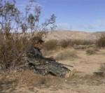 Predator Hunting Stand