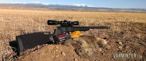 NE-California-Ground-Squirrel-Hunt-Report-17WSM-1