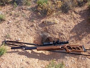 Prairie Dog dropped at 71 yards.