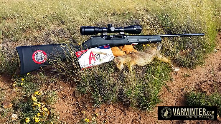 Folding Hunting Seat New Realtree Xtra Turkey Hunting